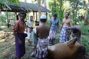 Ali dan komunitas muslim lainnya disatu kampung dipedalaman Burma, Qurban 1433 H